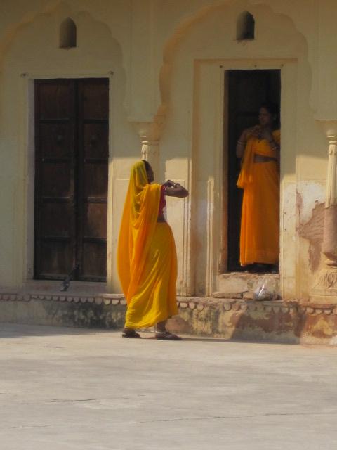 gorgeous women sari long sht