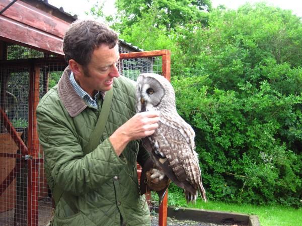 Dave owl monkey