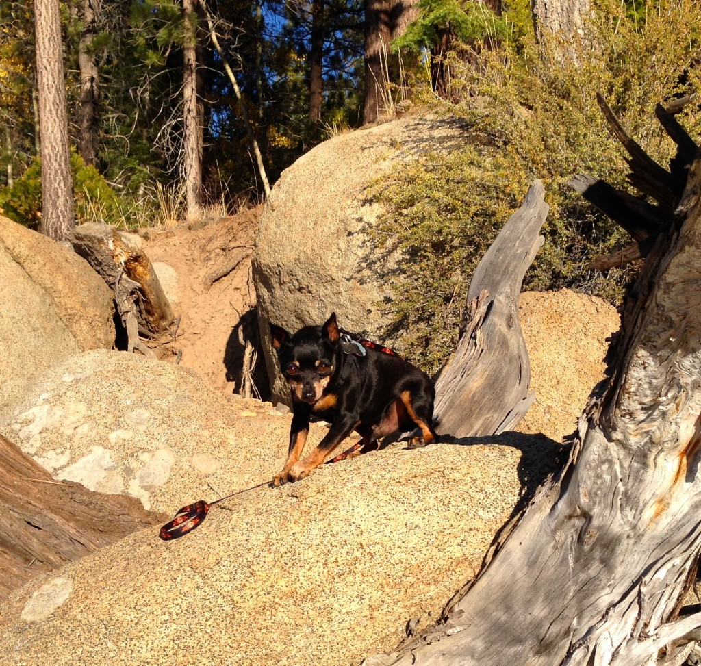 Chancy hikes