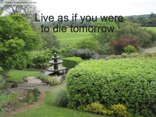 Live-die tomorrow