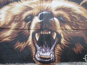 mkt bear