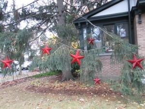 red stars tree
