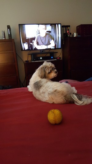 I failed to mention how much I love to play ball & watch TV.